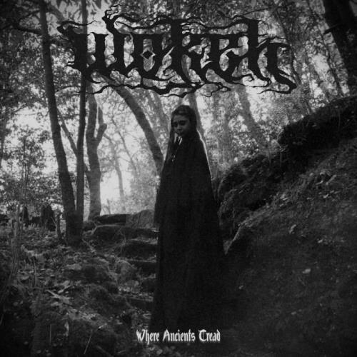Wokeh — Where Ancients Tread (2020)
