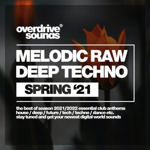Melodic Raw Deep Techno (Spring '21) (2021) FLAC