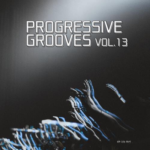 Progressive Grooves Vol 13 (2021)