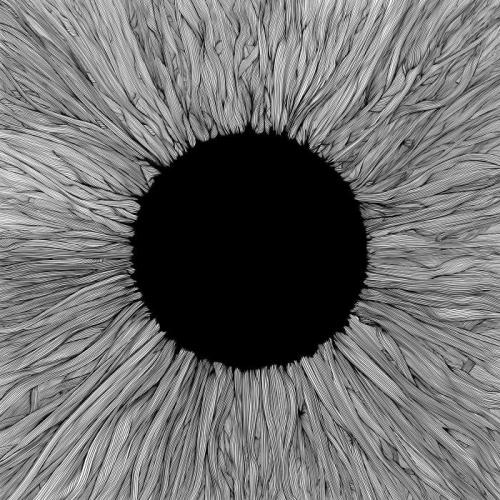 VOLA — Witness (2021)