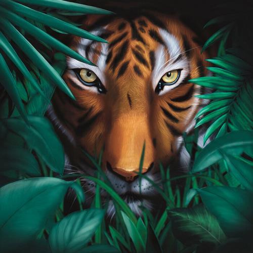 A Vision of Panorama — Unique Tiger (2021)