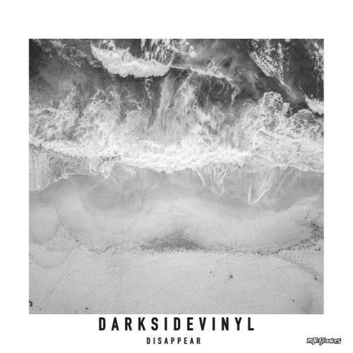 Darksidevinyl — Disappear (2021)