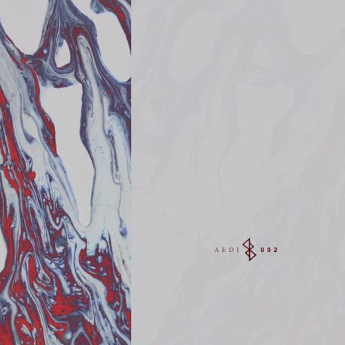 Aedi Records — Synergy (2021)