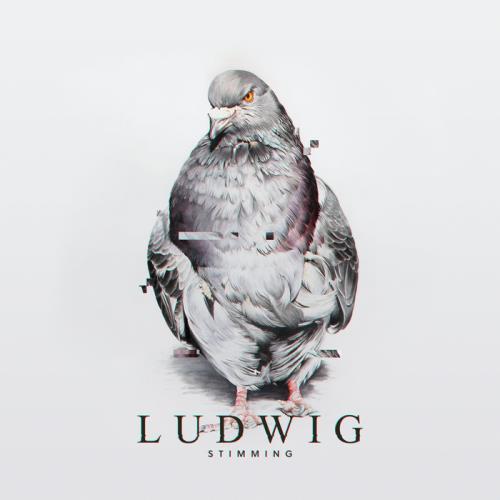 Stimming — Ludwig (2021)